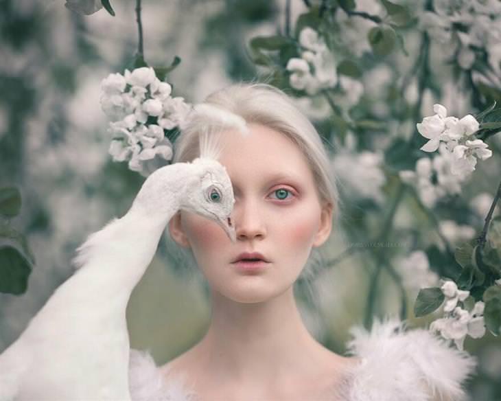 תמונות נשים וחיות של צלמת: ילדה וציפור לבנה