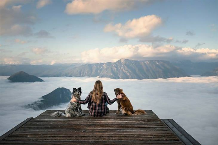 כלבים מטיילים בנורווגיה: אן והכלבים יושבים על מזח ומסתכלים על נוף של הרים וערפל