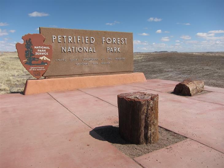 נופים מהפארק הלאומי הפארק הלאומי פטריפייד פורסט: הכניסה לפארק