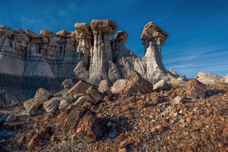 נופים מהפארק הלאומי הפארק הלאומי פטריפייד פורסט: תצורות אבן
