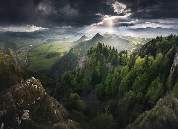 תמונות מפולין: הפארק הלאומי פייניני