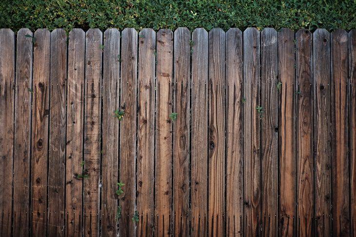 דברים שמושכים מזיקים: גדר עץ