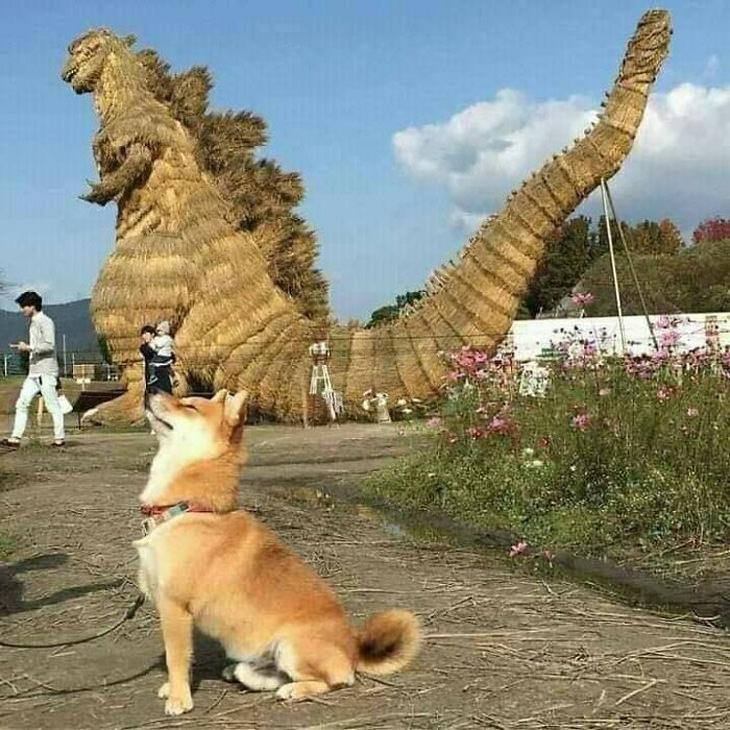 חיות מצחיקות שחושבות שהן הכי חשובות בעולם: כלב בפוזה כשמאחוריו פסל ענקי של דינוזאור מקש
