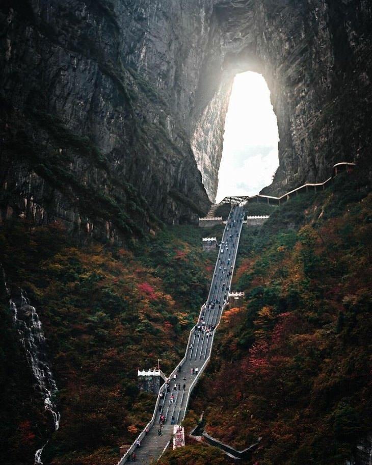 תמונות מדהימות מאסיה: גרם מדרגות ארוך בין עצים מול פתח מערה