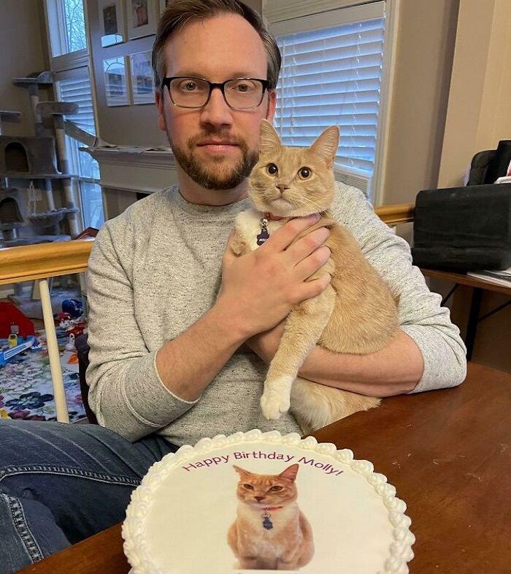 חתולים מפונקים ומצחיקים: חתוליה חוגגת יום הולדת עם עוגה בהתאמה אישית