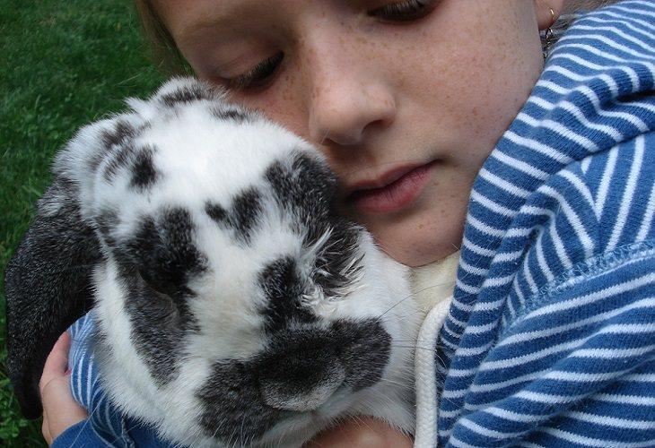 עצות הורות לגידול ילד יחיד: ילדה מחבקת ארנבת