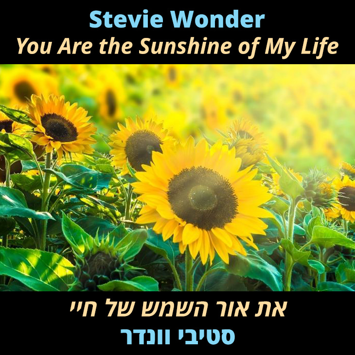 תרגום לשיר You Are the Sunshine of My Life: את אור השמש של חיי סטיבי וונדר
