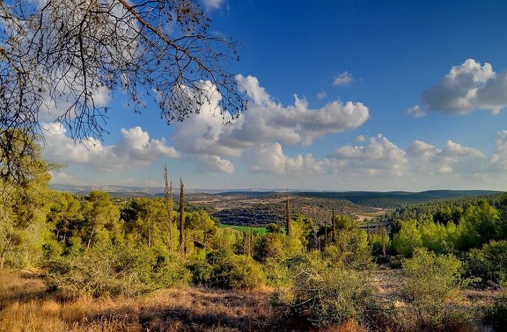 מסלולי טיול בשפלת יהודה: מנופי פארק בריטניה