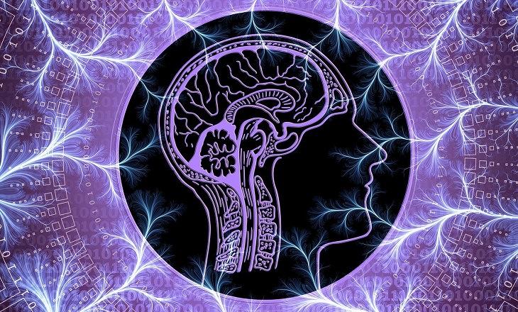 ניקוי דופמין: איור של מוח מוקף בברקים סגולים