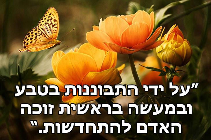ציטוטי רבי נחמן מברסלב: על ידי התבוננות בטבע ובמעשה בראשית זוכה האדם להתחדשות.