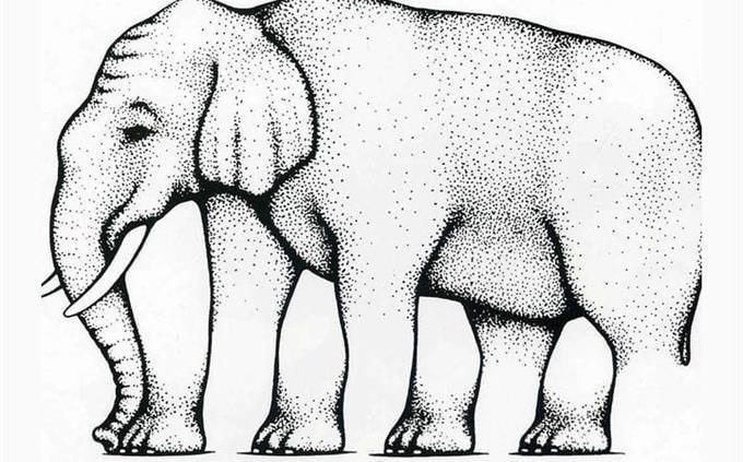 מבחן תפיסה חזותית: איור של פיל עם אשלייה אופטית