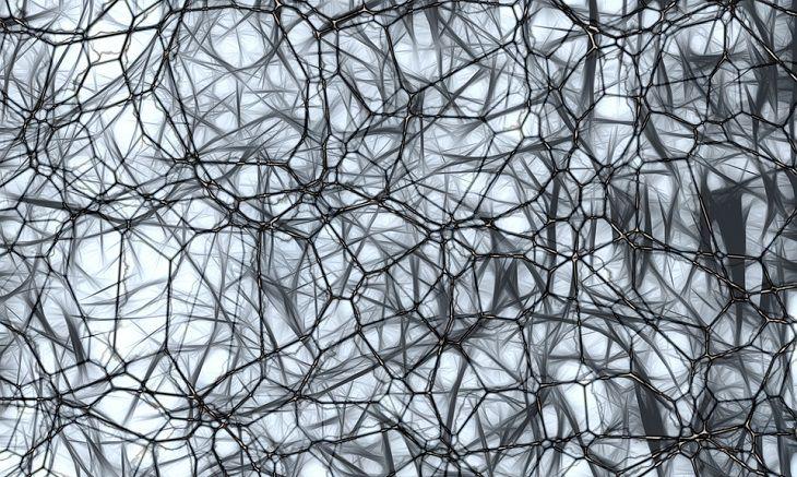 מחקר על שיפור הזיכרון: רשת עצבים