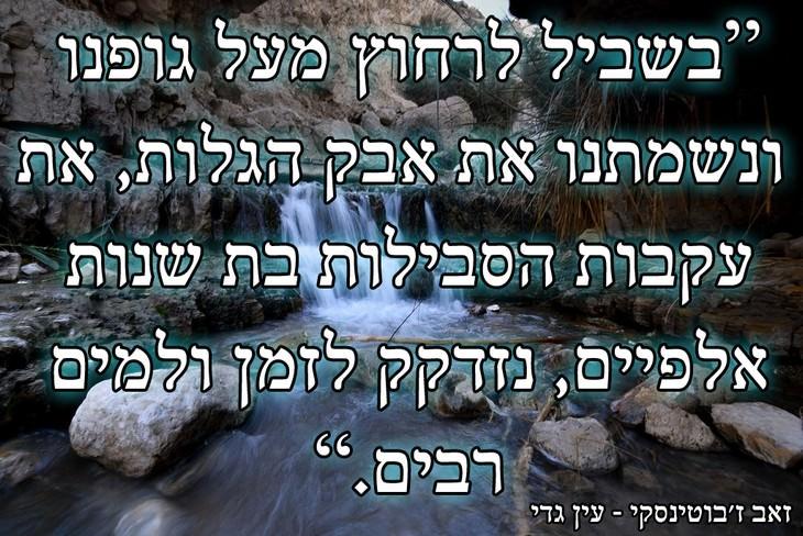 גלויות ישראליות יפות ומרגשות: עין גדי וציטוט של זאב ז'בוטינסקי