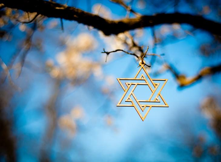 דעתון - תעלה הברכה מאת דוד אשל: תליון מגן דוד תלוי על ענף