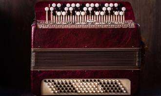 מצא את ההבדלים מוזיקלי: אקורדיון