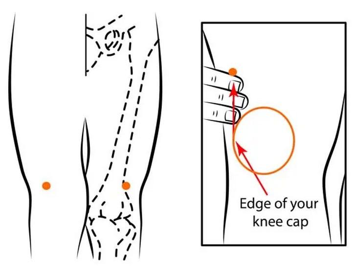 נקודות לחיצה להקלה על התכווצויות שרירים ברגליים: נקודת לחיצה ST-34