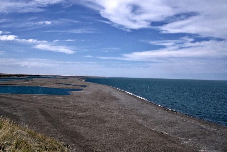 פלאי טבע בארגנטינה: נופי חצי האי ואלדס