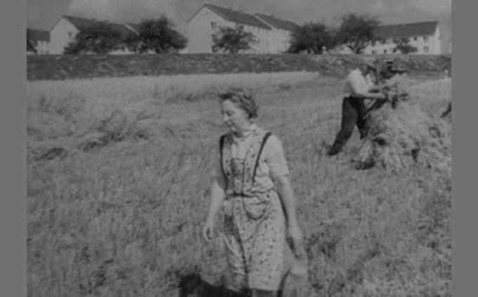 מבחן ניתוח מצבים: אישה הולכת בשדה ומאחוריה איש עובד בשדה