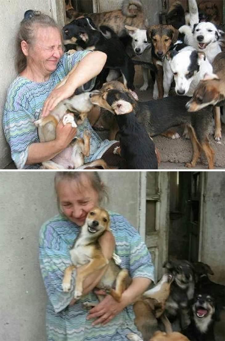 מקלט כלבים בסרביה: סבטלנה מוקפת בכלבים