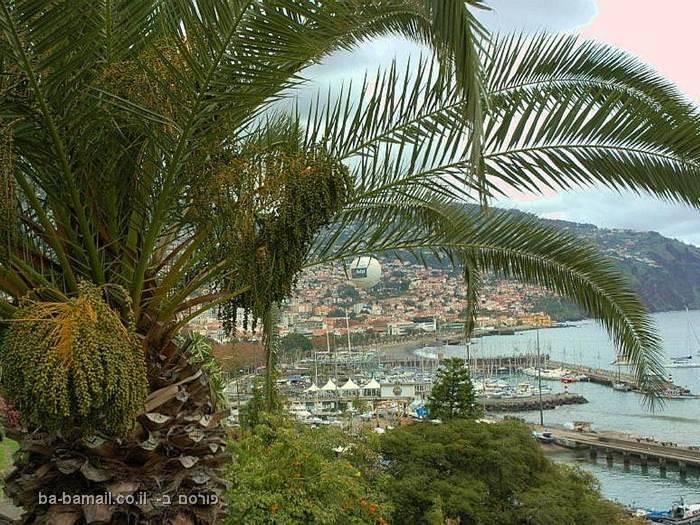 לחופשה מושלמת - האיים הקסומים של מדיירה
