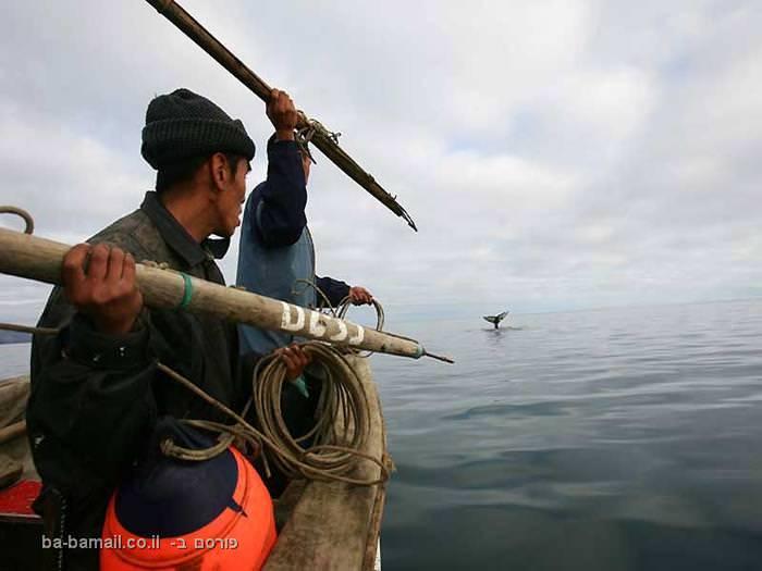 ים, מים, דיג, דייגים, צלצל