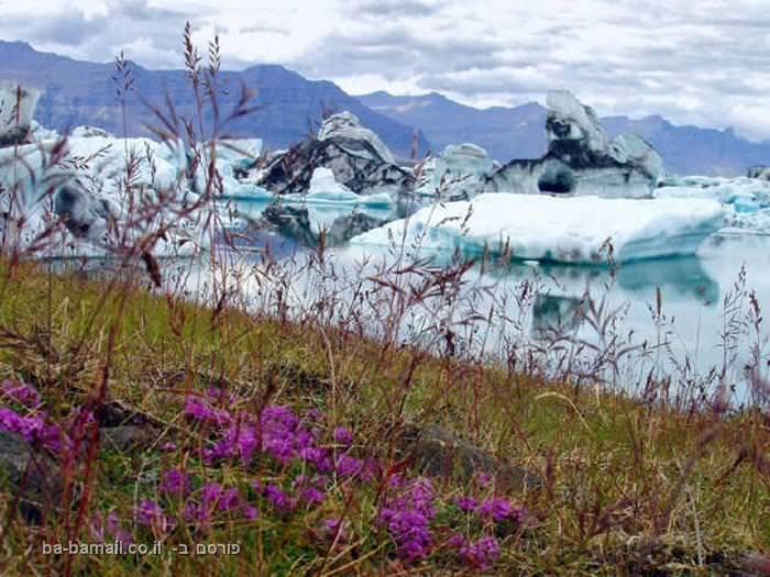 איסלנד, קרחונים