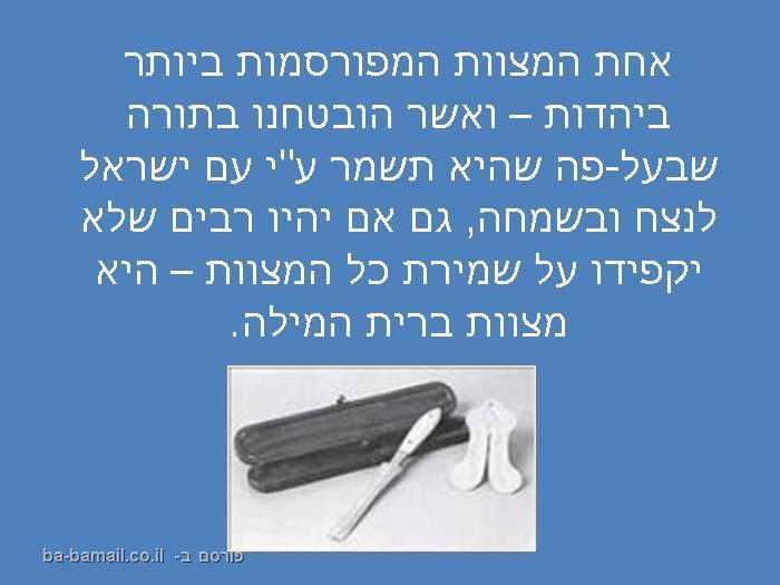מצוות ברית המילה, ברית מילה, יהדות, ערלה