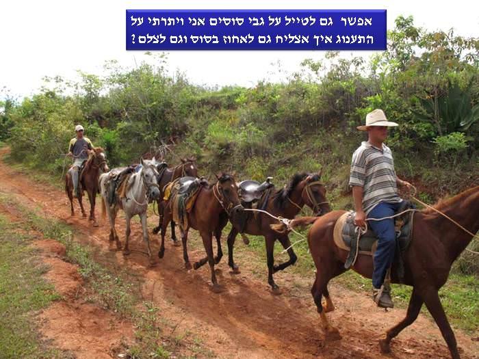 ביקור בלתי נשכח בעמק וינאלס שבקובה
