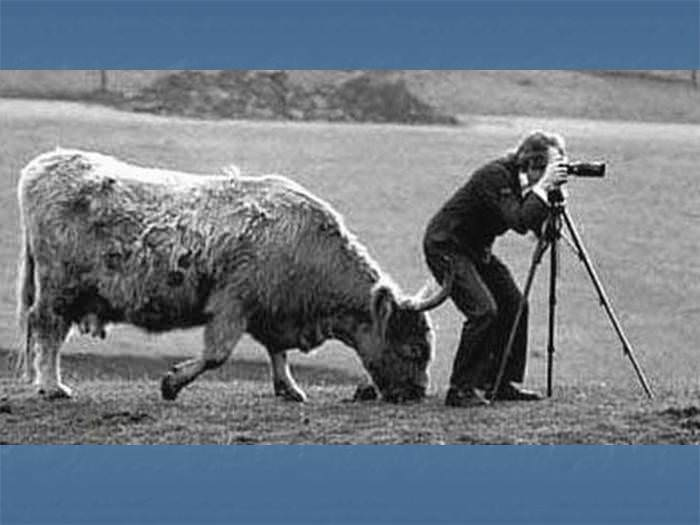 הידעת? הצילום עלול לפגוע קשות בבריאות
