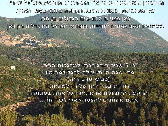 סיור בשמורת הטבע הקסומה של הר מירון