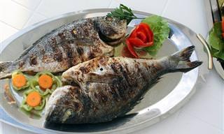 מדריך הדגים המלא: בחירה, אחסון ובישול דגים בצורה נכונה