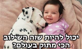 ילדים קטנים וכלבים - יכול להיות שזה השילוב הכי מתוק בעולם?