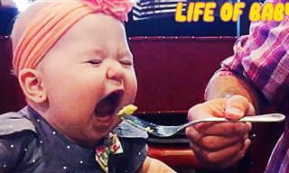 מה קורה כשמנסים לקחת מהתינוקות האלו את האוכל?