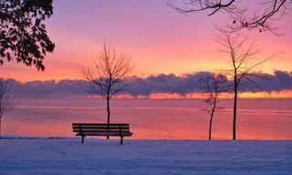 ספסל מול העולם - חלק בלתי נפרד מהנוף!