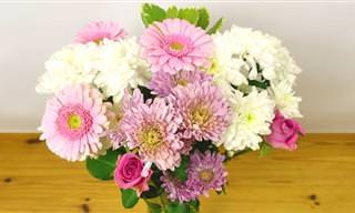 טיפ פשוט וגאוני לשיפור מראה הפרחים באגרטל