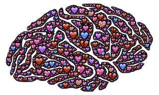"""כל מה שאתם צריכים לדעת על """"הורמון האהבה"""" - אוקסיטוצין"""
