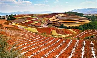 מחוז דונגצ'ואן - אדמות האודם הקסומות של סין