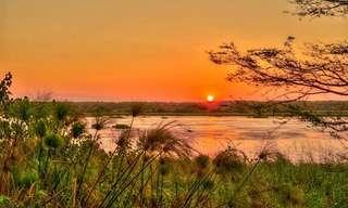 20 סיבות מדהימות לבקר בדרום אפריקה