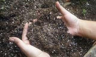 מדריך להכנת קומפוסט ודישון הגינה