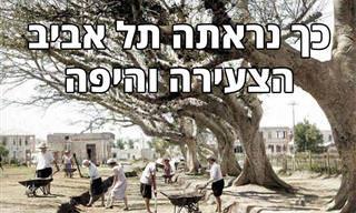 15 תמונות נוסטלגיות נפלאות של העיר תל אביב