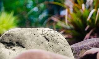האבן - סיפור עם מוסר השכל חשוב