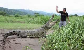 הלוחש לתנינים בקוסטה ריקה