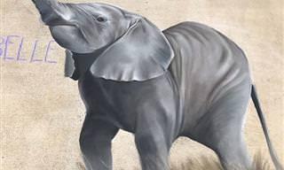 צפו ב-16 ציורי גיר נפלאים של חיות, צעצועים ועוד הפתעות!