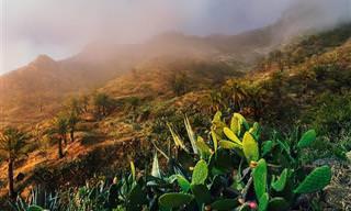 21 תמונות שחושפות את הקסם של האיים הקנריים