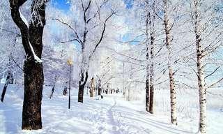 החורף של חיינו - קטע קצר ומרגש