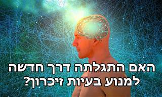 ניסוי מהפכני הוכיח שנתיקן לשקם את הזיכרון בגיל מבוגר