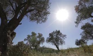 הנופים המופלאים של האביב הישראלי ברמות מנשה
