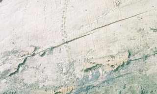 קיר הדינוזאורים של בוליביה - תופעה מדהימה!