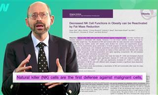 """ד""""ר מייקל גרגר מסביר על הקשר בין השמנה למערכת החיסון, הכליות, הכבד ועוד"""