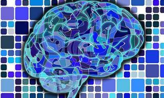 14 תרגילים יצירתיים ויעילים שישמרו על המוח שלכם חד מתמיד